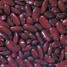 Dark Red Kidney Beans Bush Dry Shell Dry Heirloom Origin Peru
