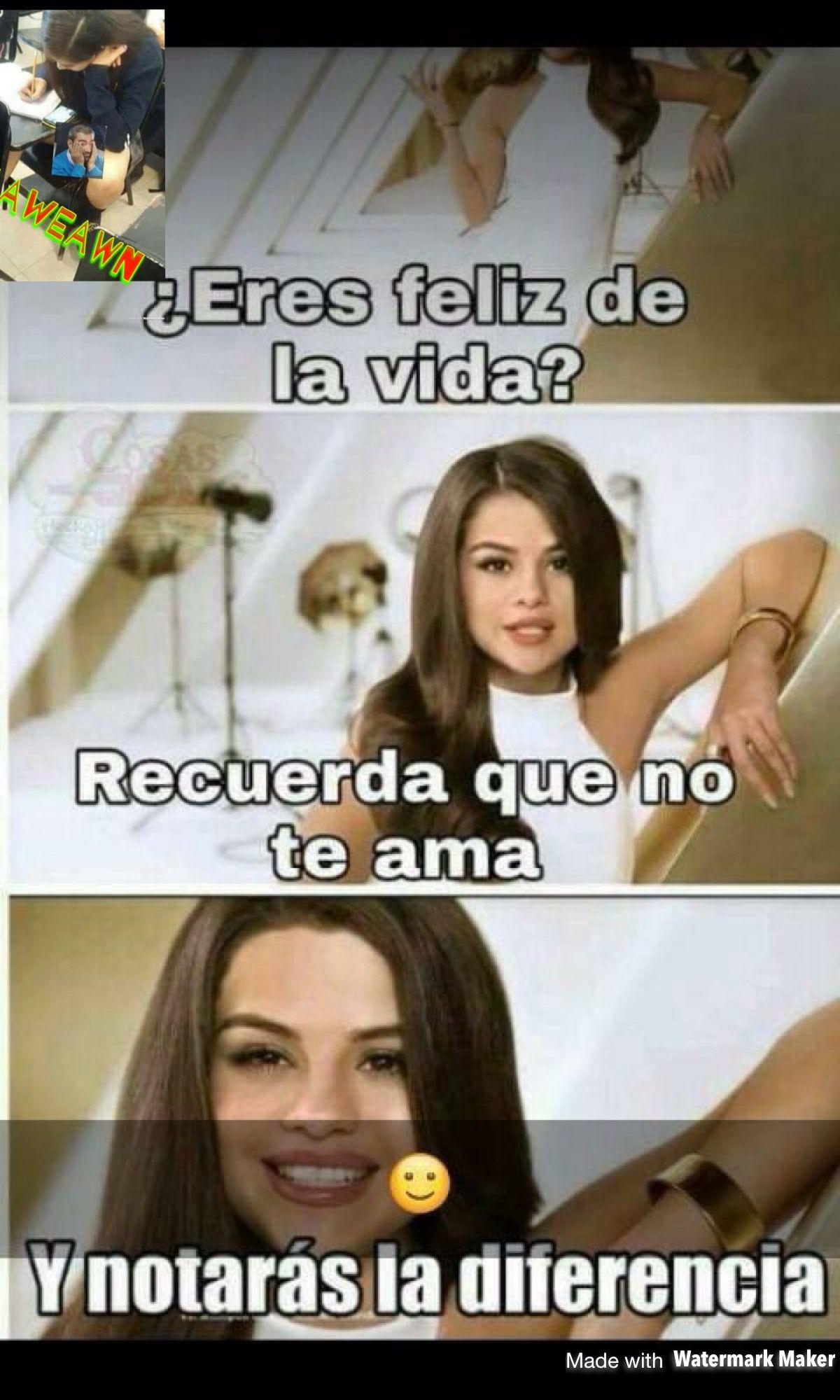 Pin De Pin En Memes Bilingues V Mejores Memes Memes Humor Absurdo