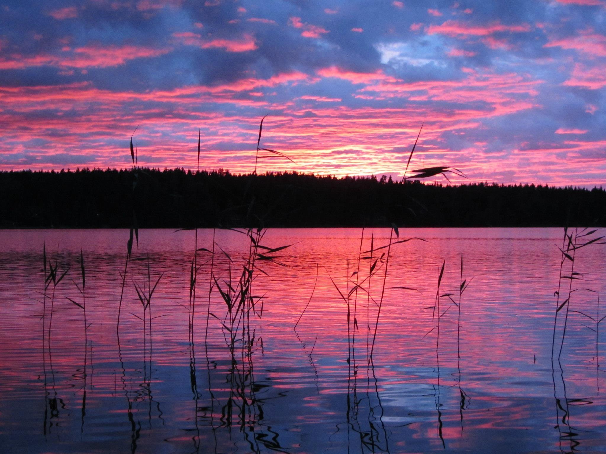 Bright pink landscape from Sonnanjärvi