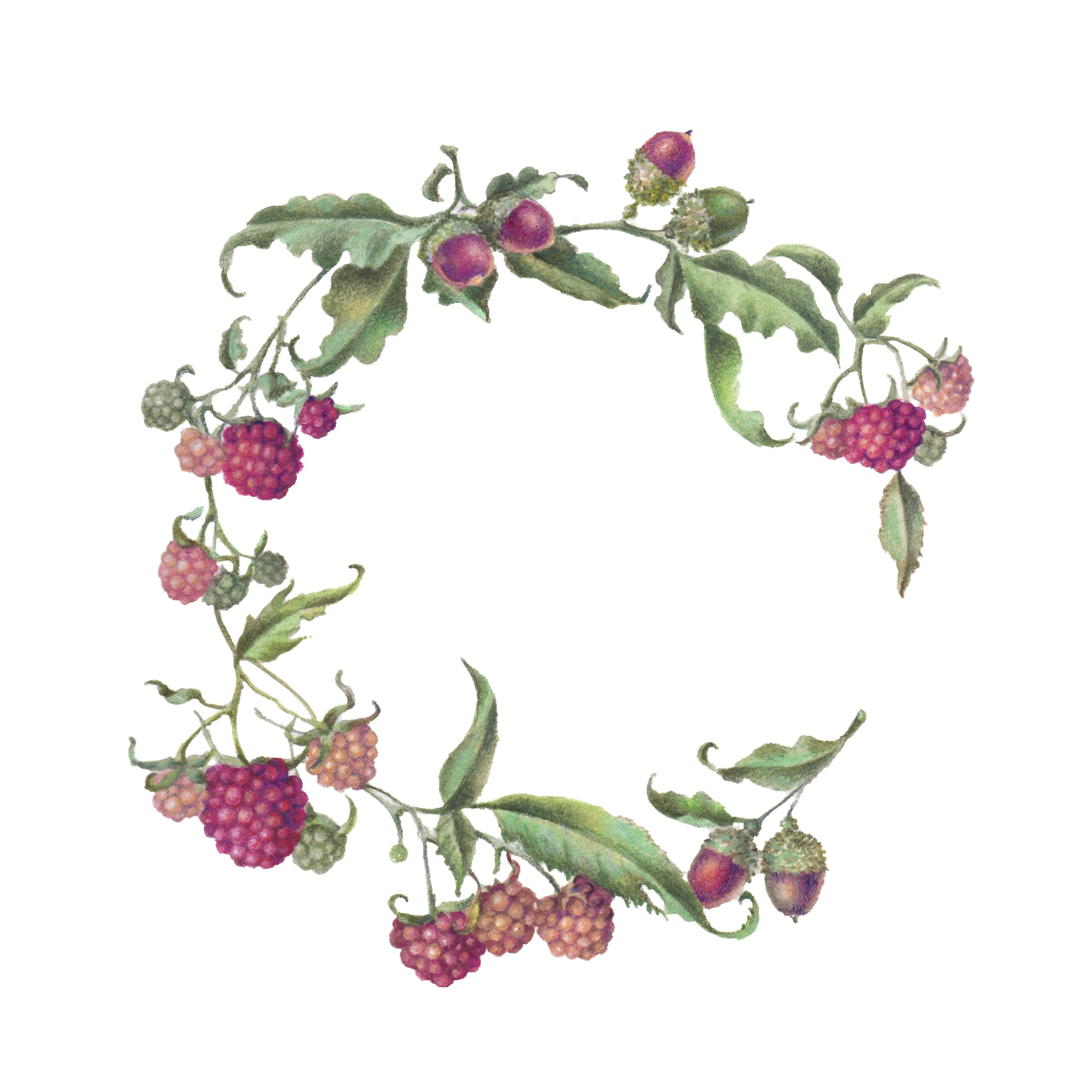 Photo of Botanical & Raspberry Acorn Garland & # 39; Just finished – watercolor order – b …
