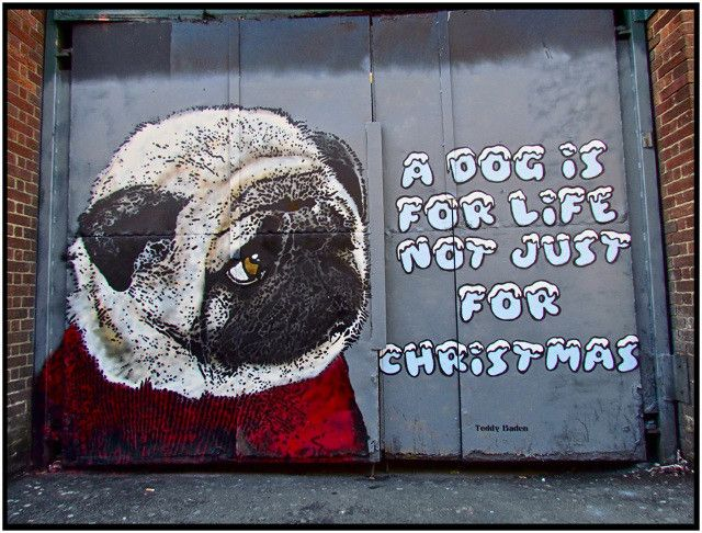 Street Artist Teddy Baden Painted This Adorable Pug Mural for the Dogs Trust Charity | Complex