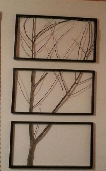 framed tree limbs | Framed Branches - Tree Art - or stick art!! This ...