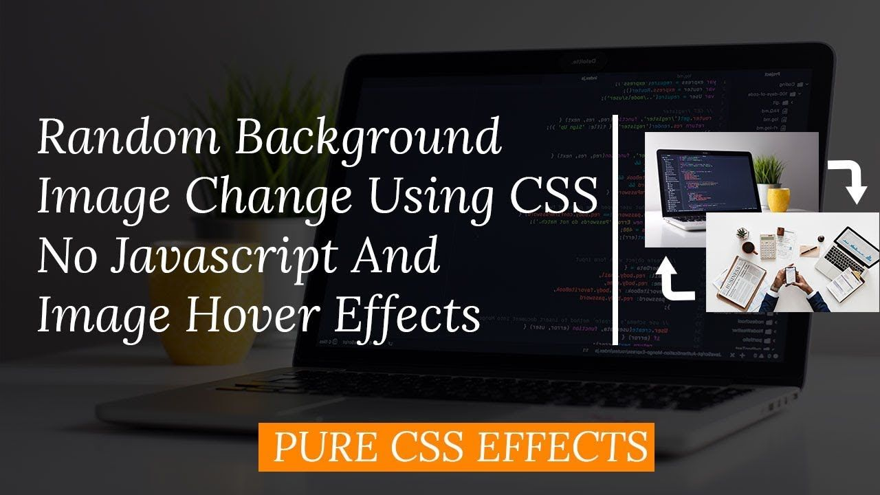 Image Hover, Animation with Cool effect Using CSS, HTML And