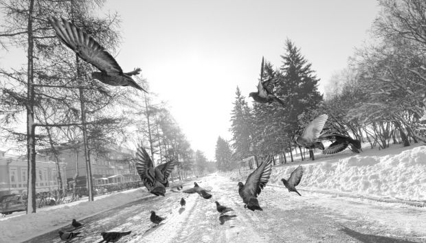 Shot October 2011 in Irkutsk, Russia. Today's Photo on 27 July 2012. Canon 60D @ 1/3200 sec, 10mm, f/5, ISO 500.