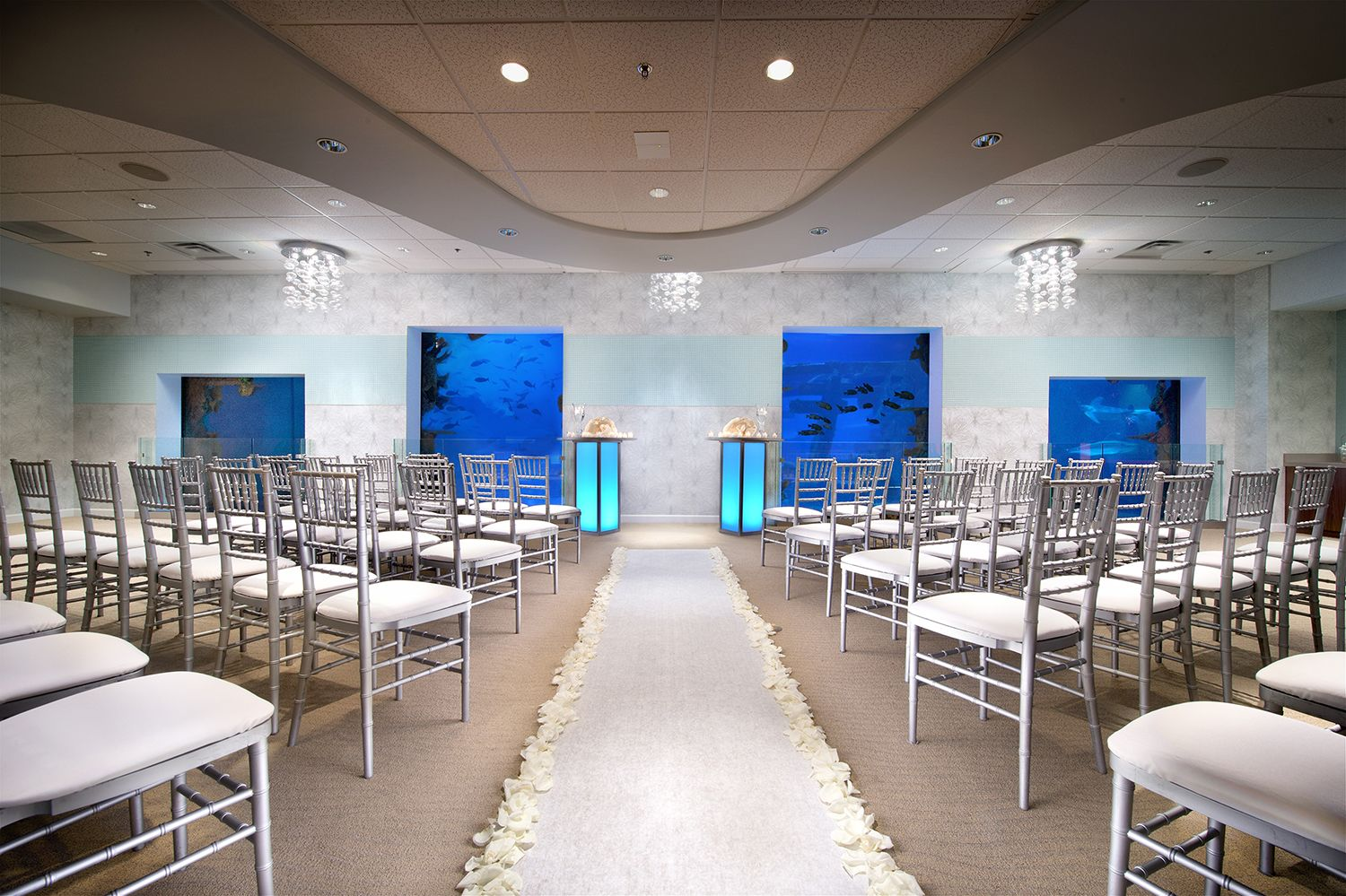 Seascape get married with sharks and turtles at the newest unique las vegas wedding ceremony with a shark tank as the backdrop i like the blue water and purple light in the background junglespirit Choice Image