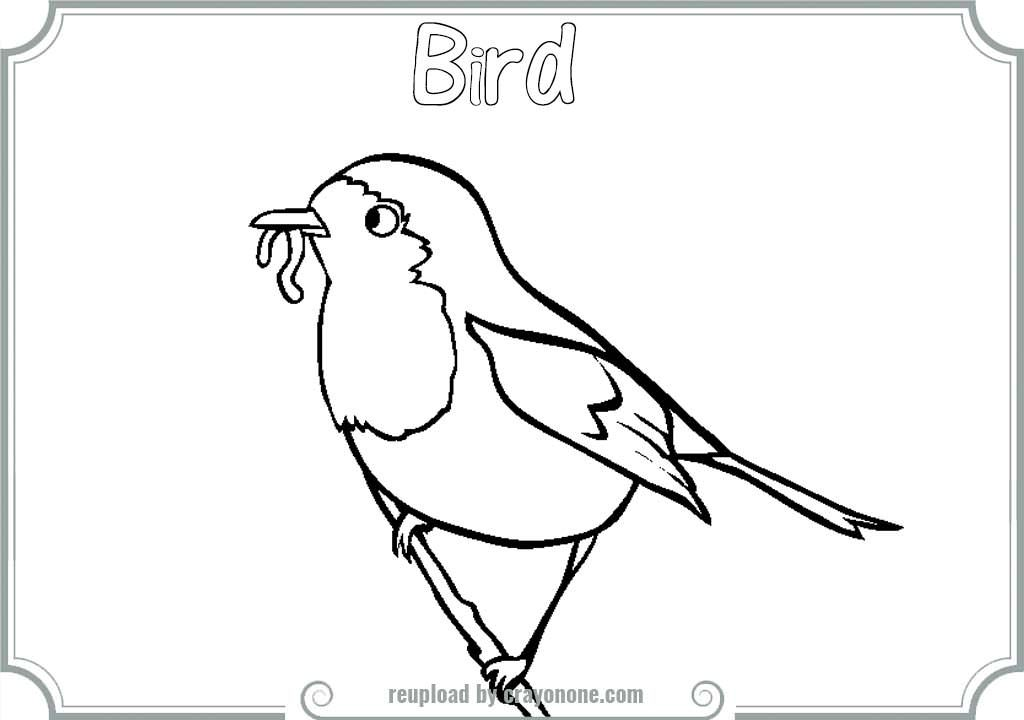 Red Robin Bird Coloring Pages Bird Coloring Pages Red Robin Bird Robin Bird