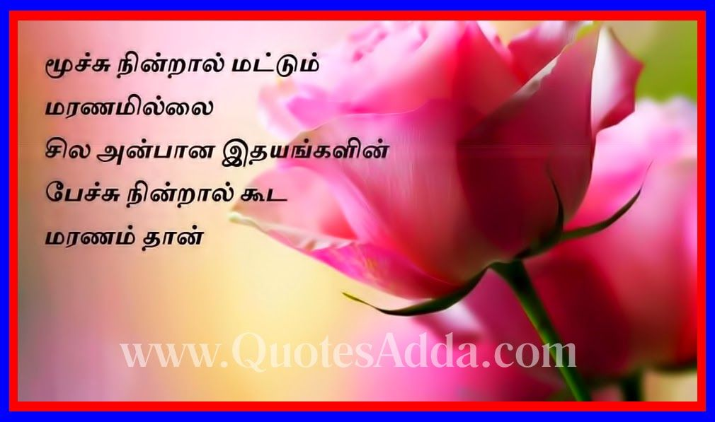 Tamil+Nice+Inspire+Quotations.jpg (1010×597) | Sorry Quotes ...