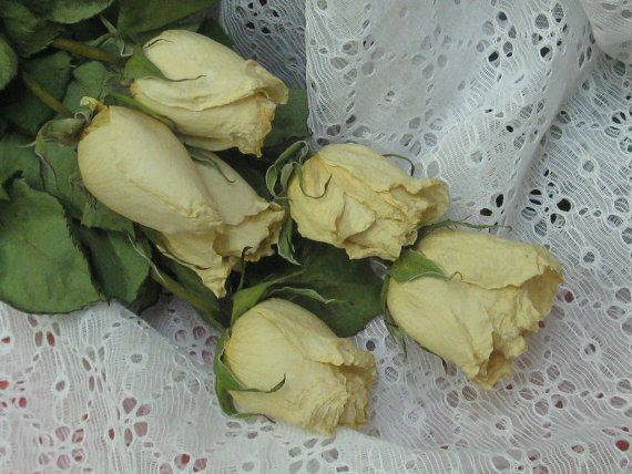 Dried Roses  Dried Flowers  Natural Dried by CountrySquirrelsNest