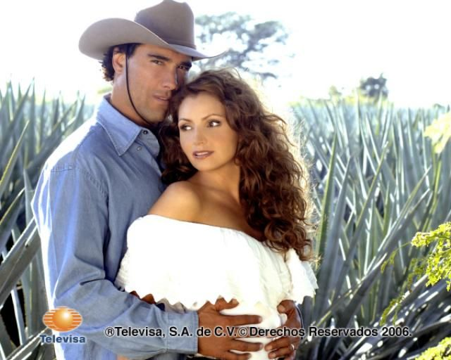 Rodrigo Y Gaviota Destilando Amor 2007 Actrices Angelica Rivera La Historia De Jesus