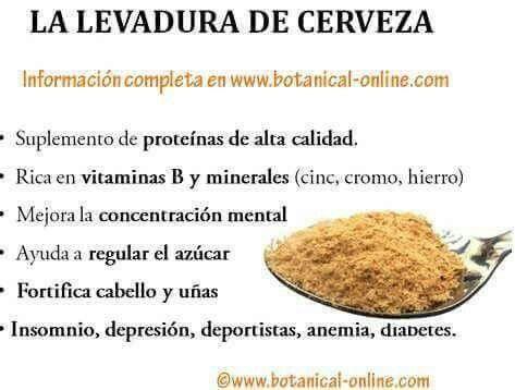 #levaduracerveza