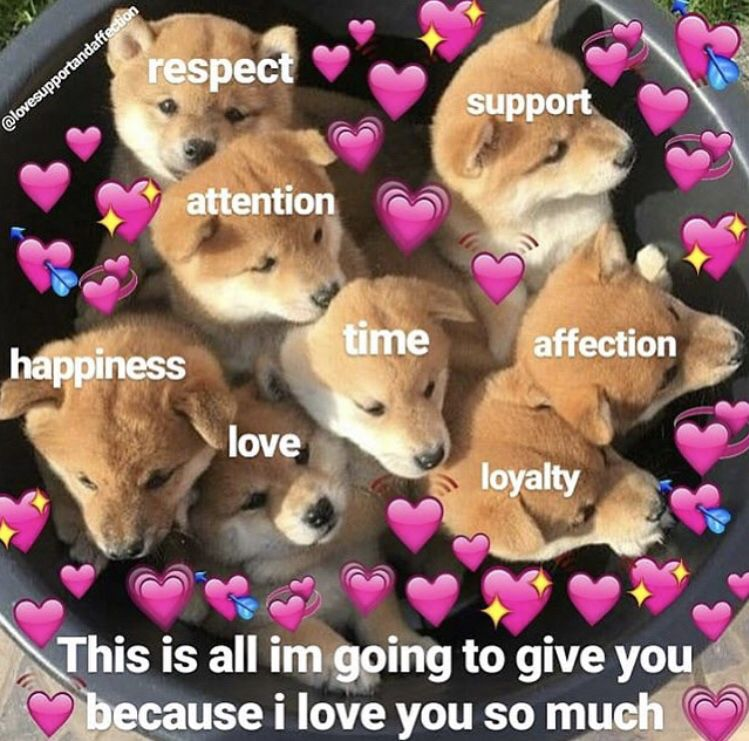 Pin by Amanda Curtis on Wholesome memes 4 when ur friends