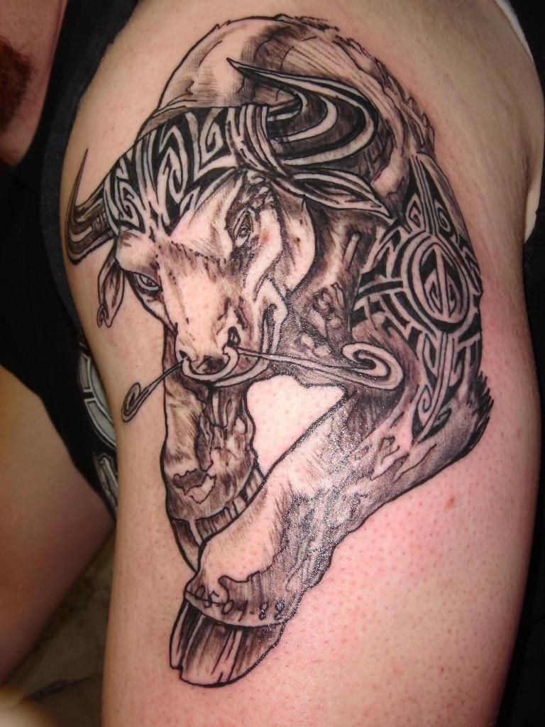 Pics photos taurus tattoos bull tattoo art - Celtic Bull Tattoo Design Taurus Tattoosbull Tattoostattoo Designstattoo