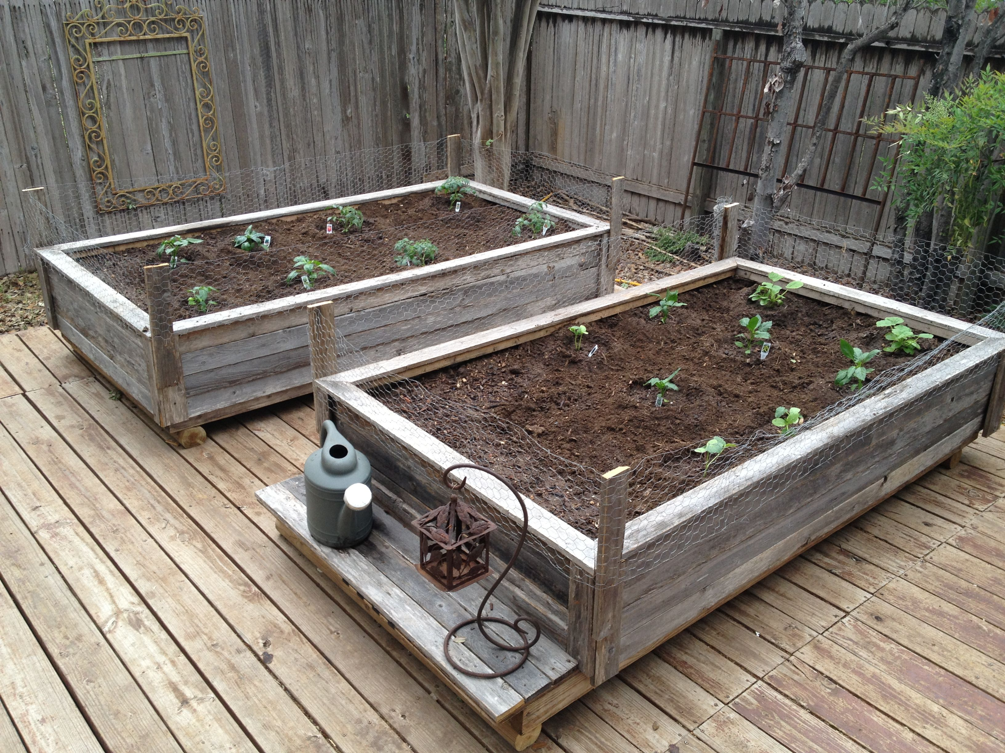 Raised garden beds made from old fence wood i got this for Garden bed fence ideas