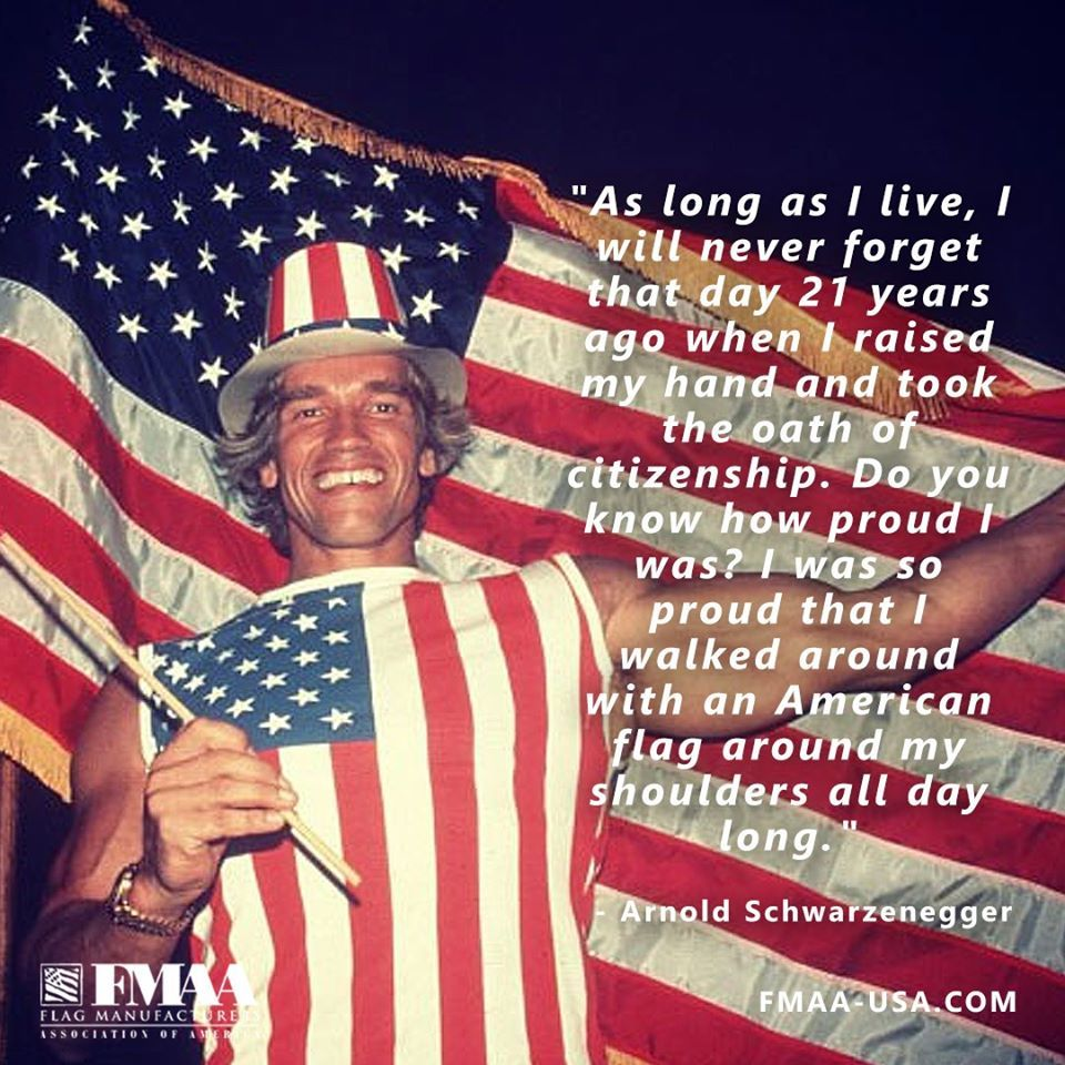 American Flag Arnold Schwarzenegger In 2020 Patriotic Quotes Professional Quotes American Flag
