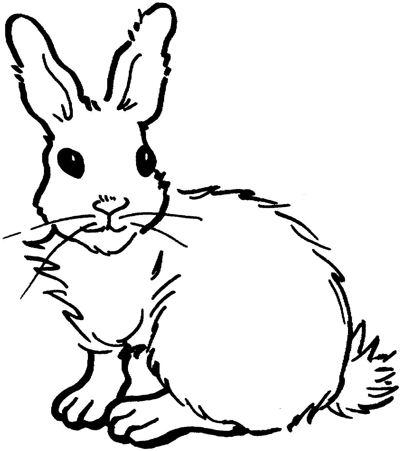 Coloring Page Rabbit Cute Bunny Coloring Sheets Rabbit Coloring