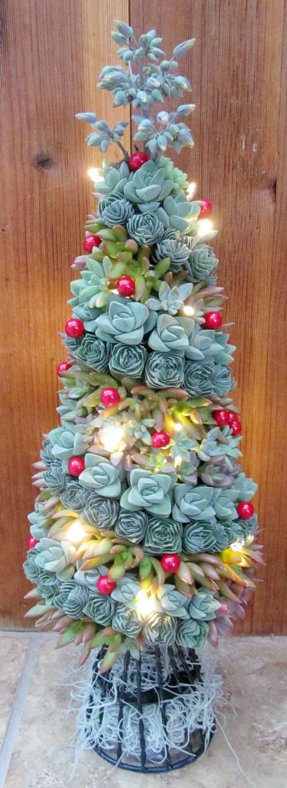 Succulent christmas tree by succulentsolutions on etsy succulents