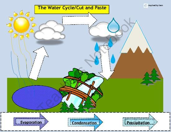 Water cycle label sort for autism from inspired by evan autism water cycle label sort for autism from inspired by evan autism resources on ccuart Choice Image