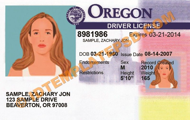 what do i need for my drivers test in oregon