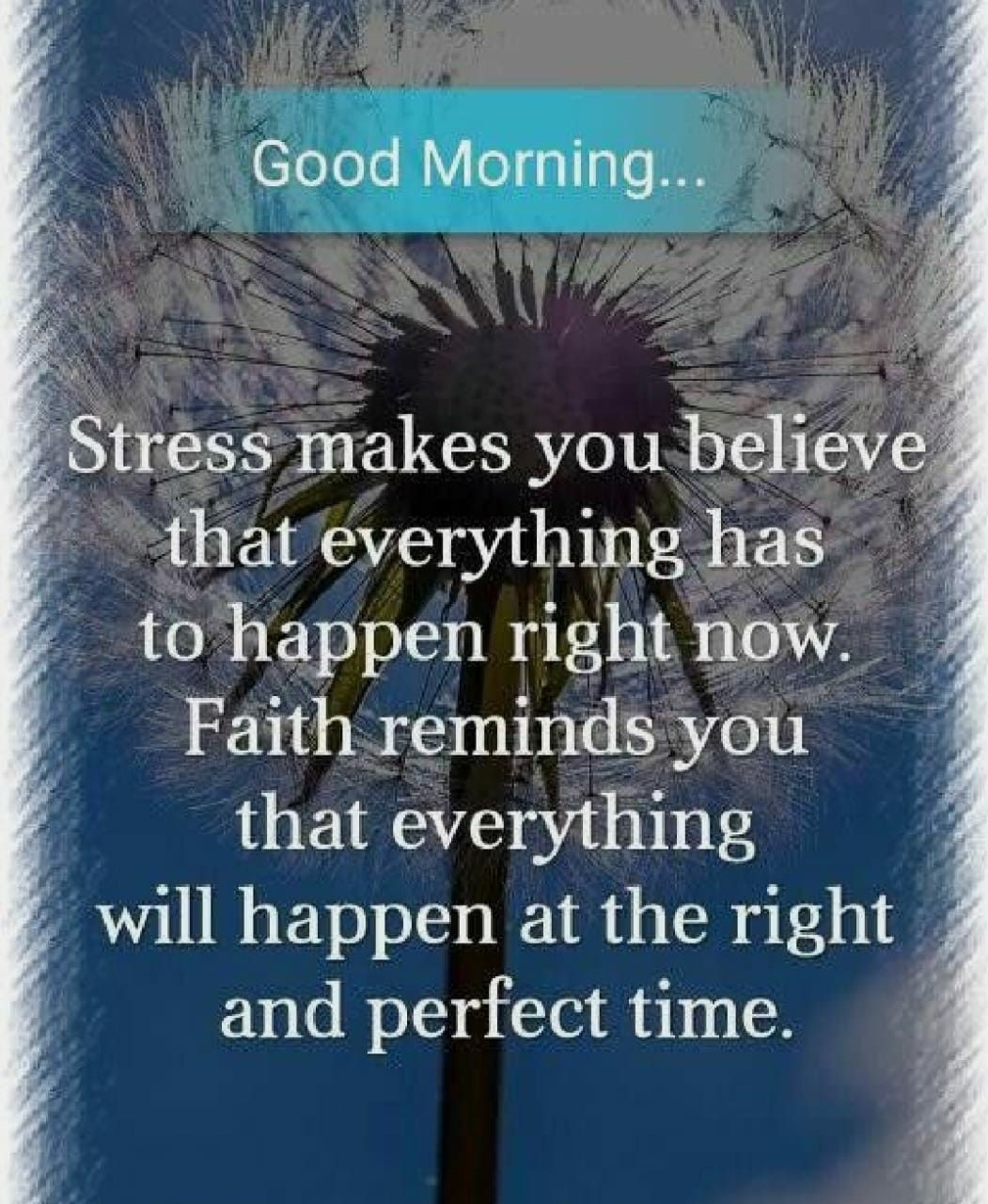 Pin By Lisa E On Lisa S Good Morning Quotes Morning Blessings Happy Morning