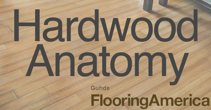 Hardwood flooring isn't just a slab of wood. There's more going under the surface.
