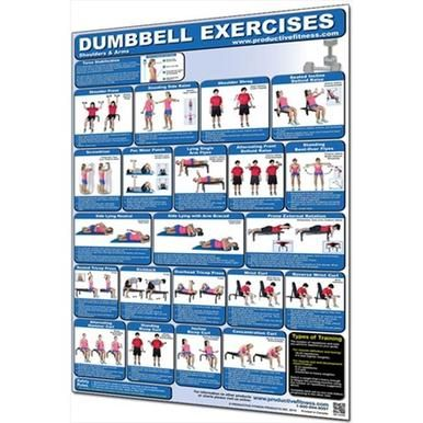 productive fitness cdul dumbbell shoulders and arms