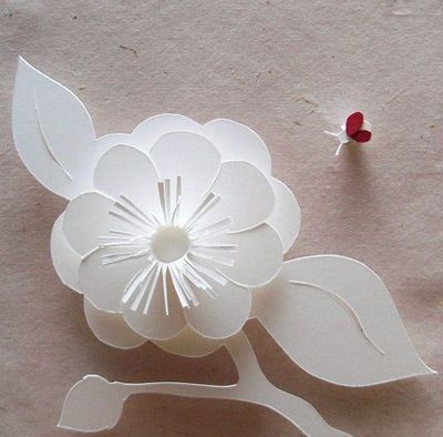 Molly jey paper sculpture camelia and ladybug paper cuts molly jey paper sculpture camelia and ladybug mightylinksfo
