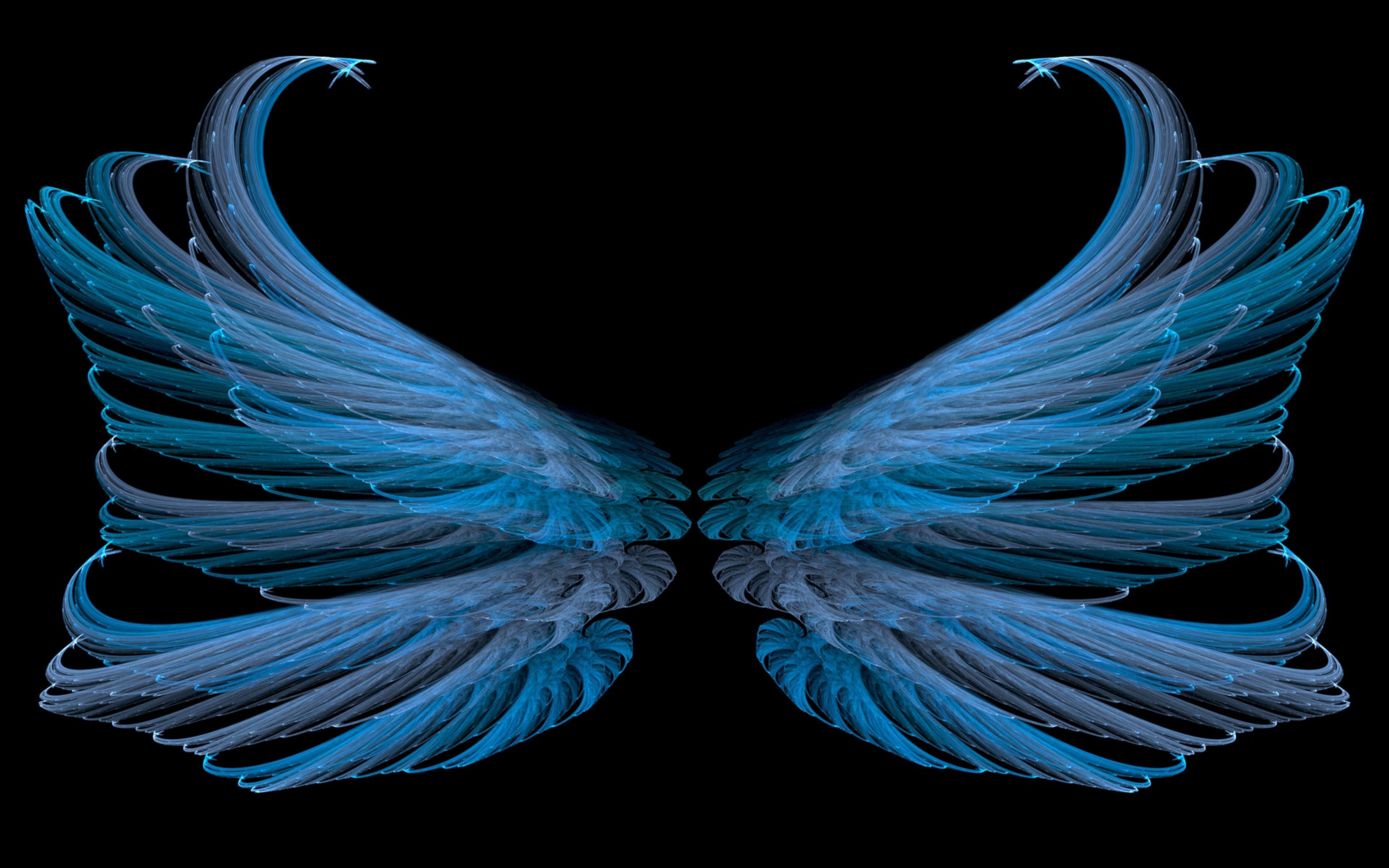 3840x2400 Wallpaper blue, black, wings, white, bright