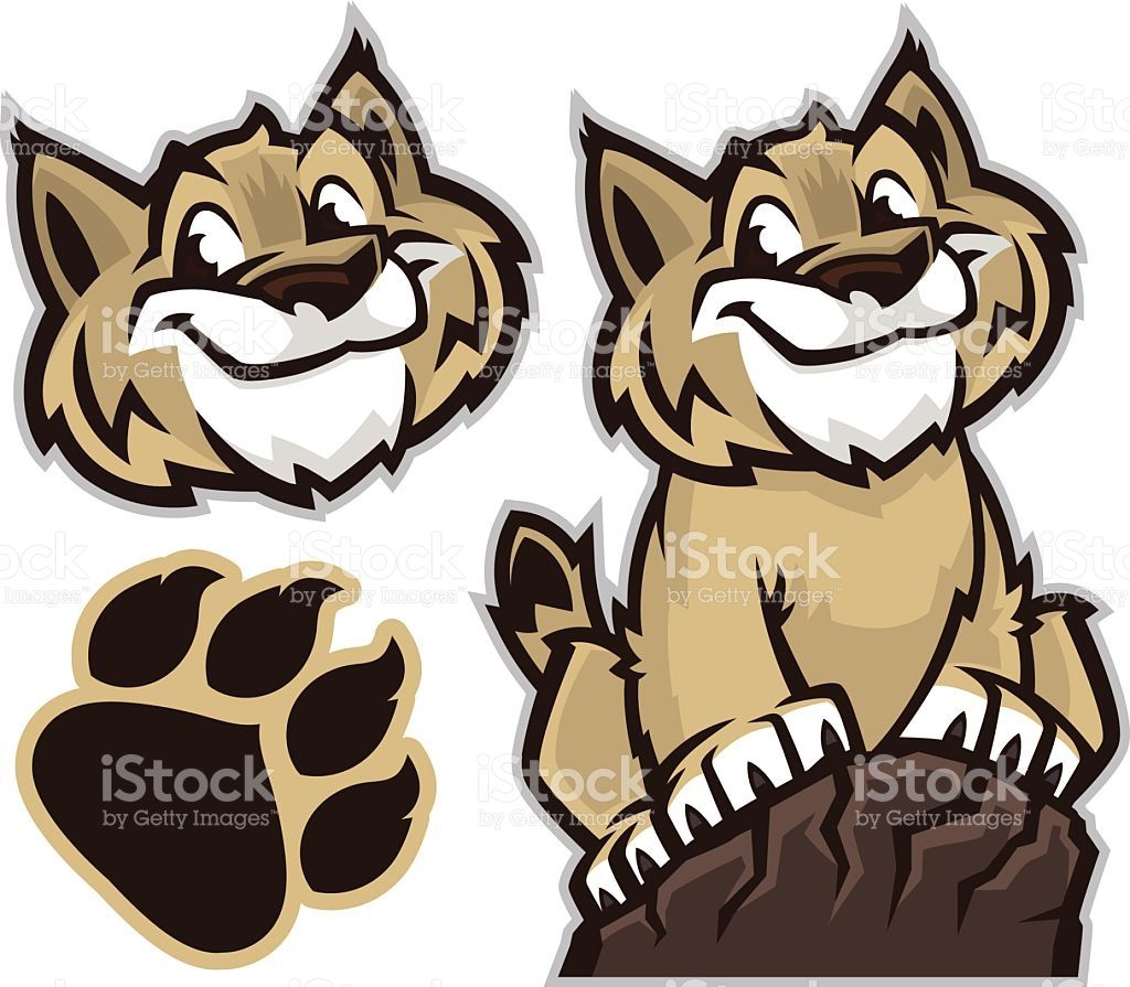 Cartoon Drawing Of A Wildcat And Pawprint Vector Id472710176 1024