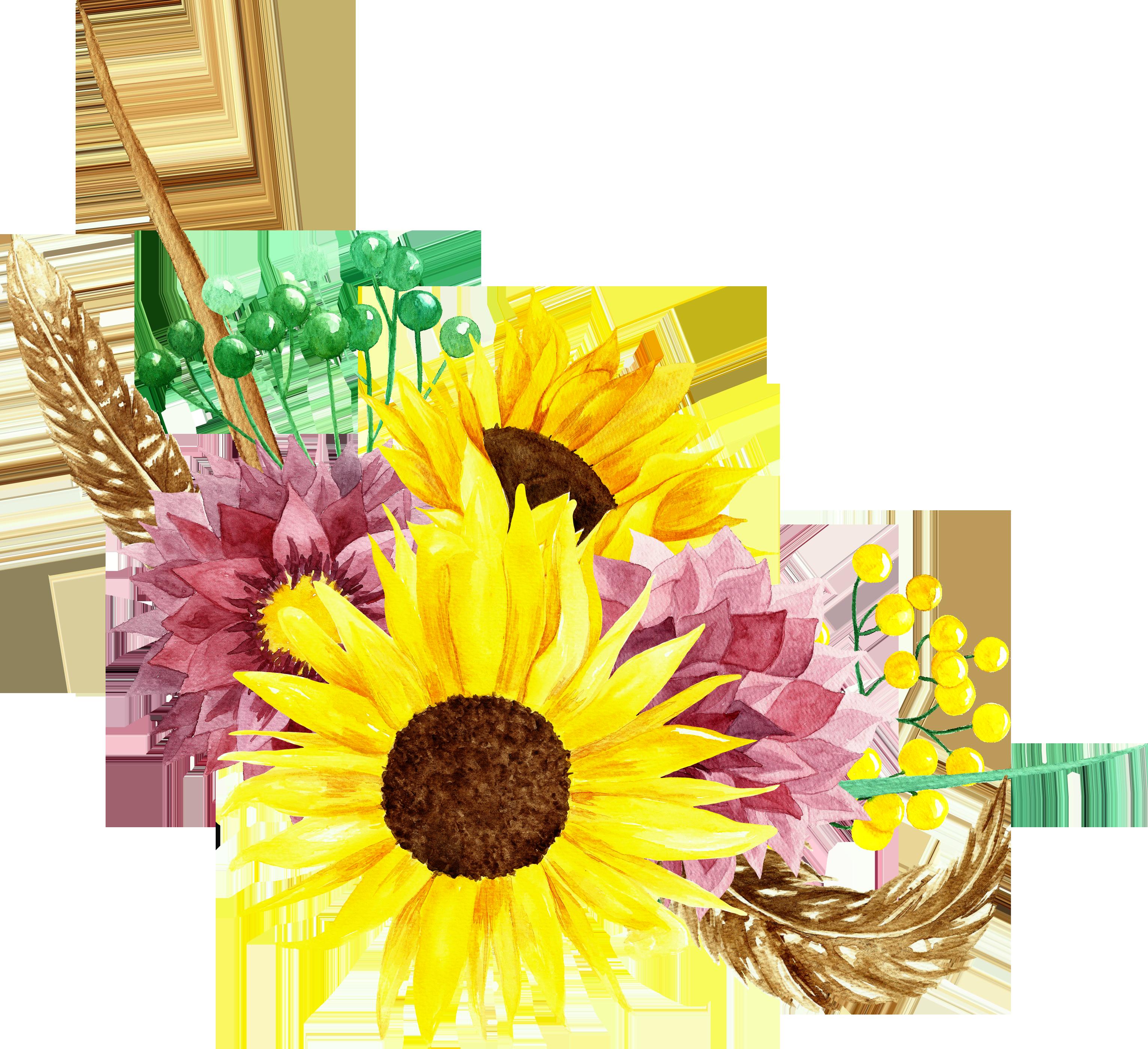 Sunflowers watercolor bouquets flowers clipart