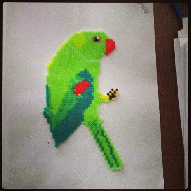 Big parrot perler beads by oliviayuyuan