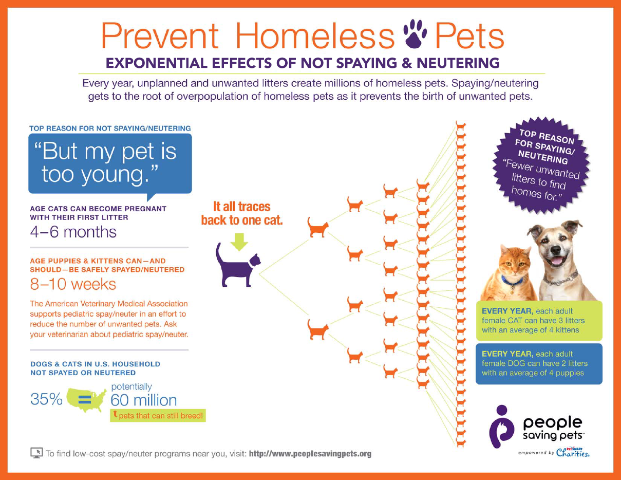 Please Spay Or Neuter Your Pets With Images Homeless Pets Neuter