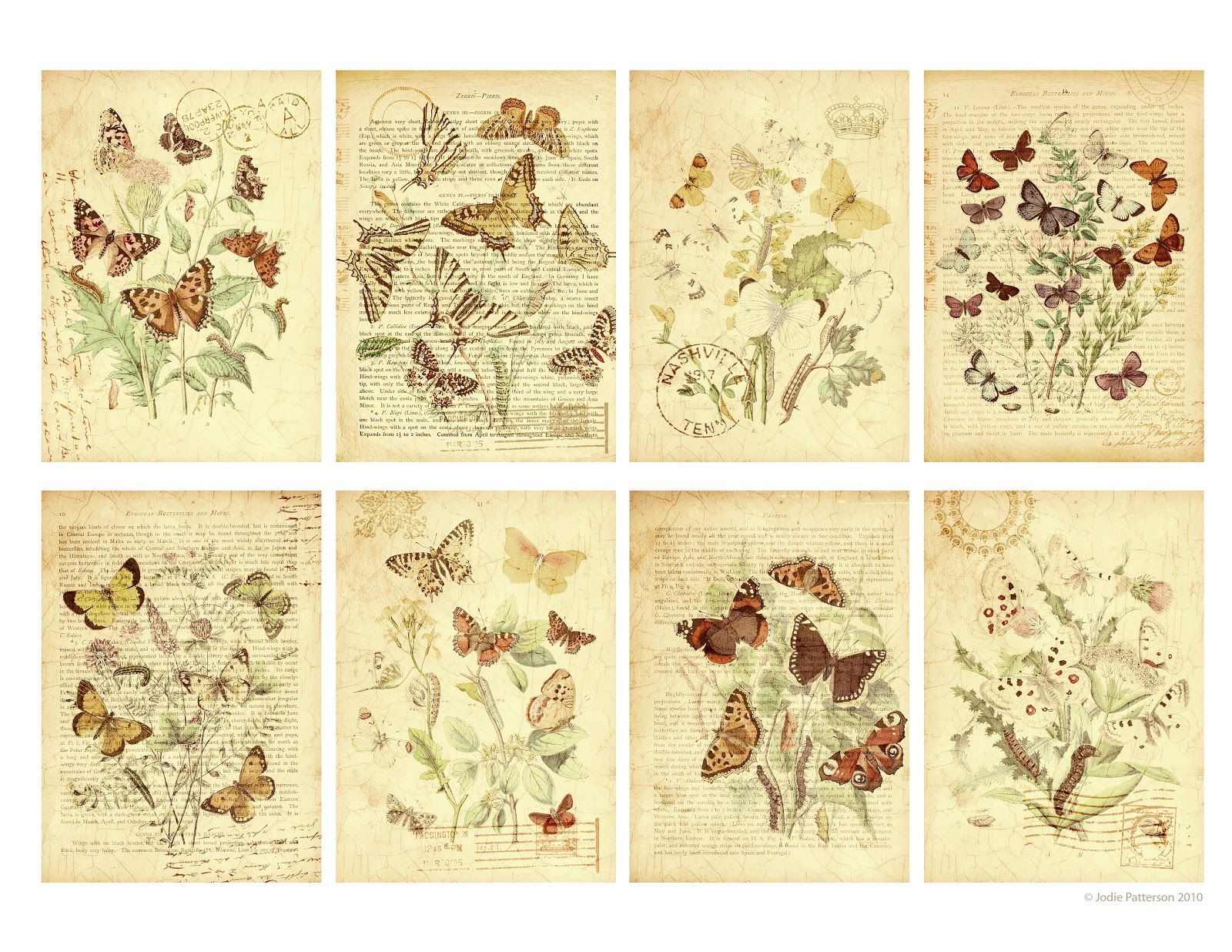 Pin by suss on vintage pinterest printable butterfly free i have a free printable for you today a collage sheet of pretty butterfly tags these images were sourced from a beautiful vintage book negle Image collections