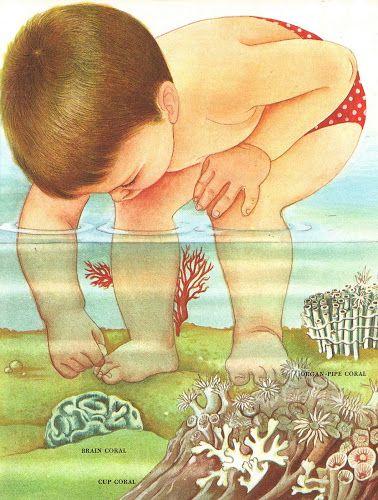 Vintage Kids' Books My Kid Loves: Wonders of Nature