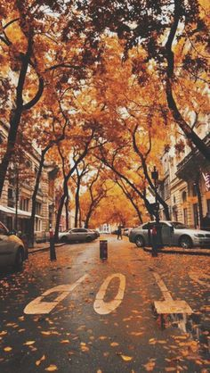 Image Result For Fall Wallpaper Tumblr Colagens Herbst Herbst