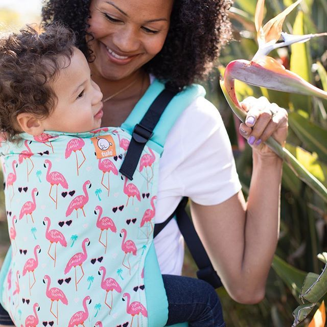 d396136d5e1 Flamingo baby carrier! Who is looking forward to