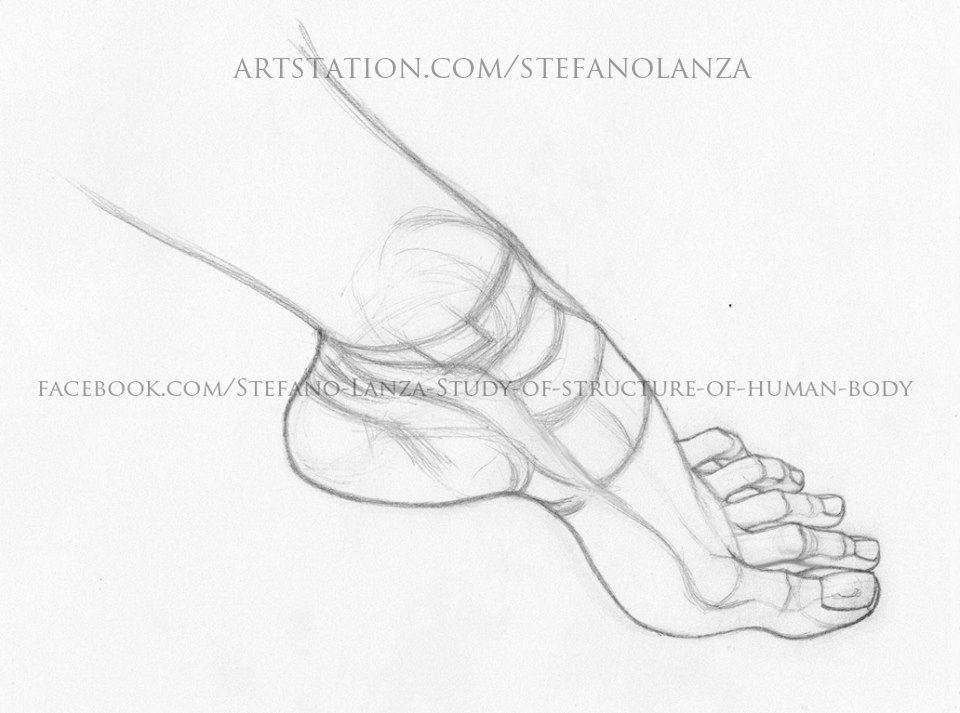 art #drawing #draw #anatomy #disegno #feet #foot #pencil #matita ...