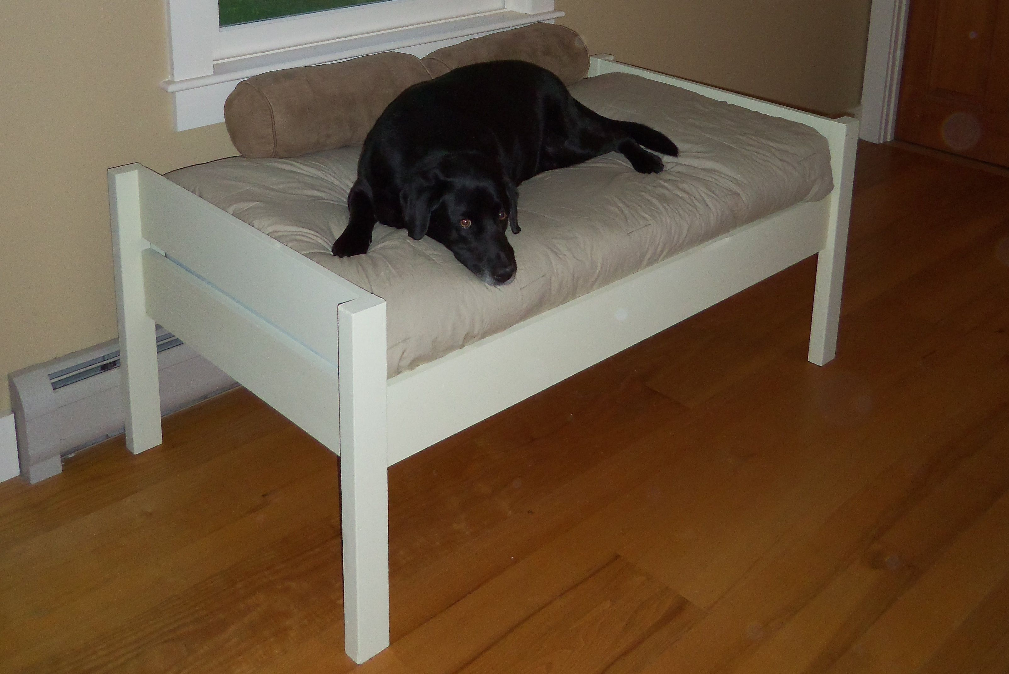 Pet Bed DIY Building Plans & Tutorial Diy dog bed