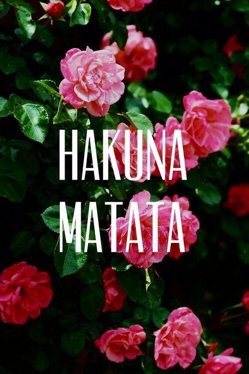 Hakuna Matata Flowers And Pink Image Planos De Fundo Hakuna Matata Wallpaper