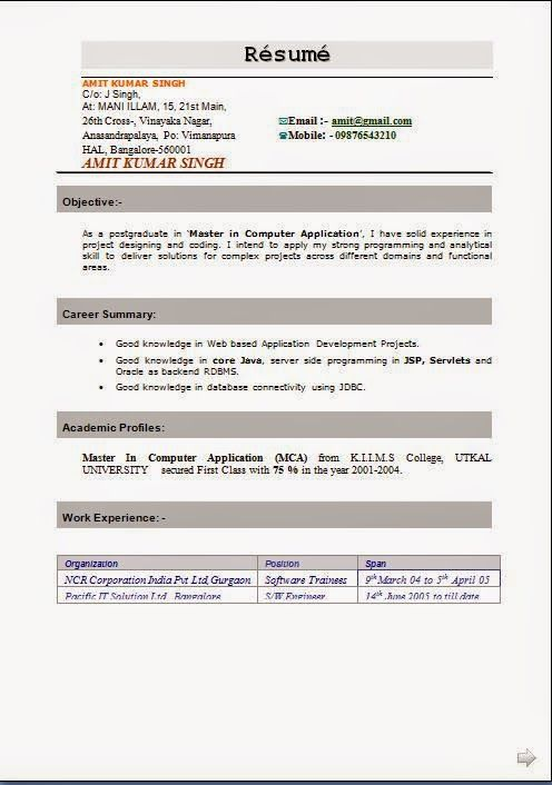 International Format Of Cv Sample Template Example Of Excellentcv