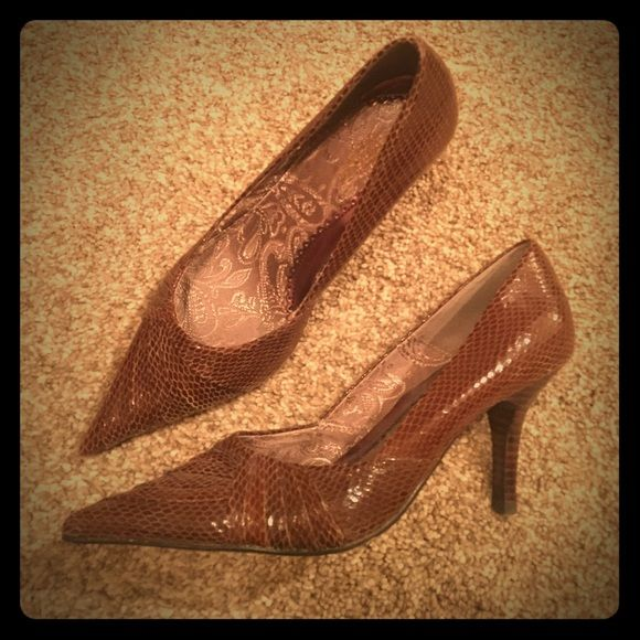 """Snake pump High quality pumps are 3"""" high & made with snake skin. The inside is cushioned.  Worn twice. Seychelles Shoes Heels"""