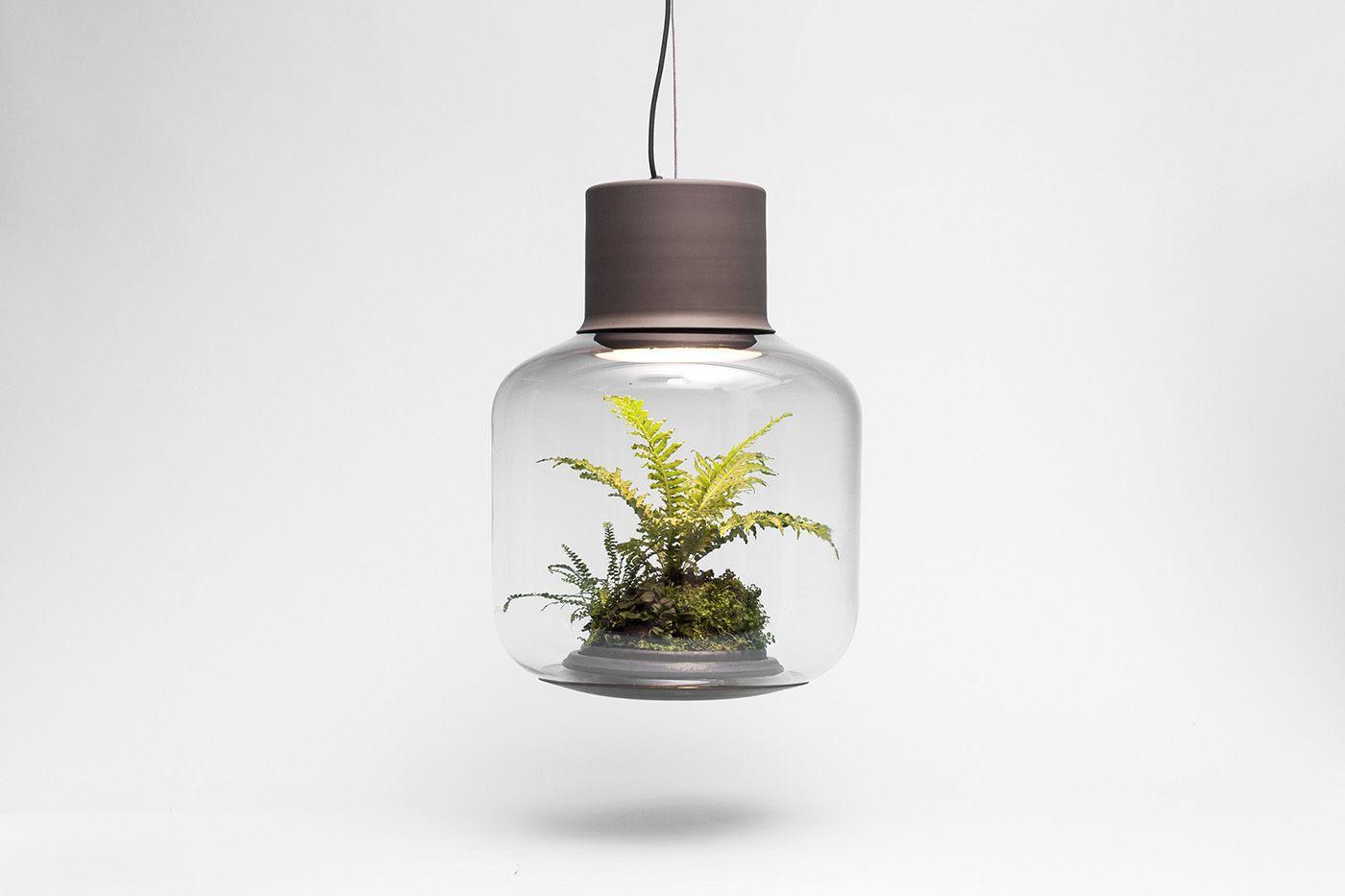 Planten in een donkere ruimte - Decoratie/ Accessoires | Pinterest ...