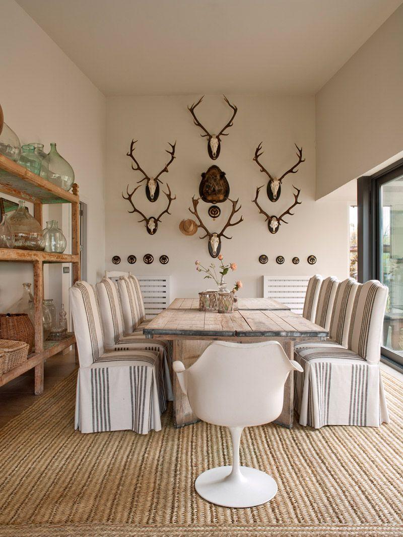 12 casa la isla n e 43774 for the home pinterest for Trofeos caza decoracion