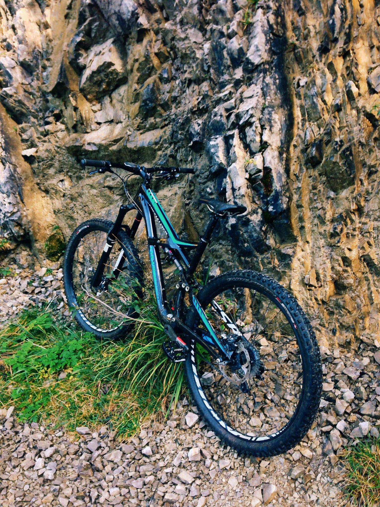 38208aeed86 Specialized Enduro Comp 29 Downhill Bike
