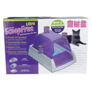 Petsafe Scoopfree Self Cleaning Cat Litter Box Cat Litter Box Litter Box Cat Litter