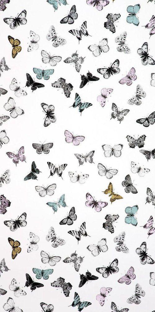 Wallpaper Butterfly And Background Image Sparkle Wallpaper Mandala Wallpaper Cute Patterns Wallpaper