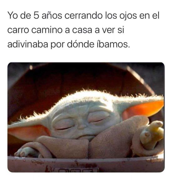 Que Cuchito Memes De Yoda Memes Divertidos Memes