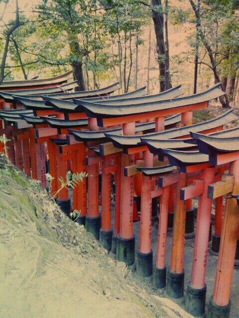 Kioto templo fushimiinari-taisya