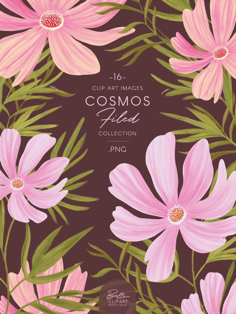 Hand Painted Cosmos Florals Clipart Pink Flower Illustration With Images Flower Illustration Flower Clipart