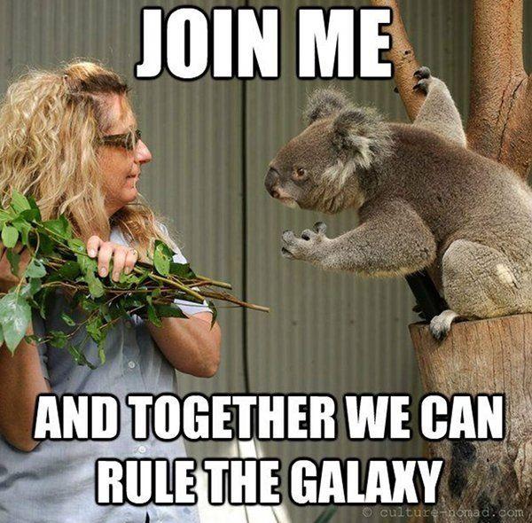 Rule the galaxy!