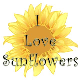 Bonfirenature Zazzle Com Store Sunflower Pictures Sunflower Sunflower Art